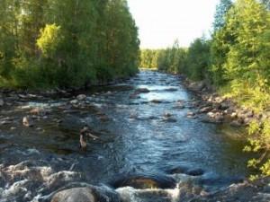 рыбалка в финляндии виды