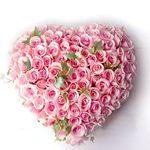 День святого Валентина в Австралии